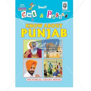 Cut and Paste Know About Punjab Picture Booklet by StatMo.in