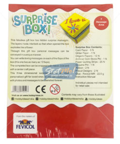 Pidilite Surprise Box by StatMo.in